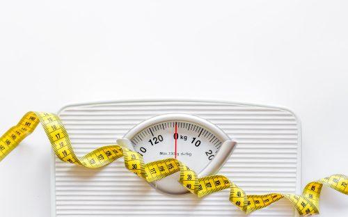 השפעת תוספי פרוביוטיקה ופרביוטיקה על מיקרוביום המעי, המשקל ומסת השומן